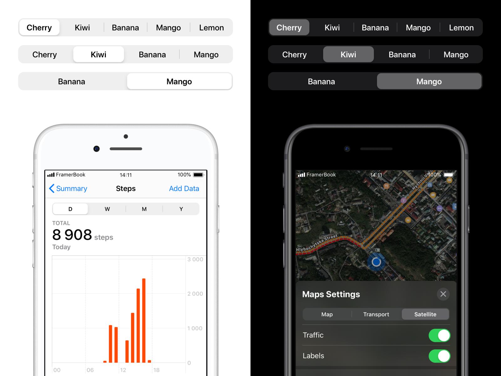 iOS 13 Segmented Control